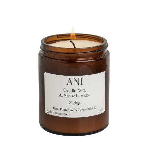 ANI candle no1 Spring