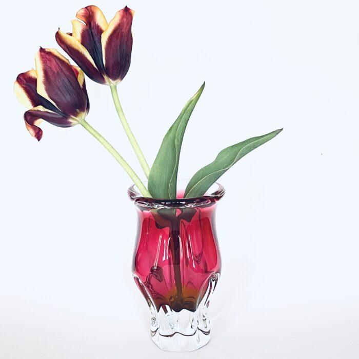pink chribska vase with tulips